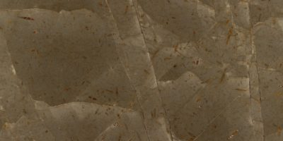 natural-stones-marble-marmore-jurassic-brown-classic-tumb