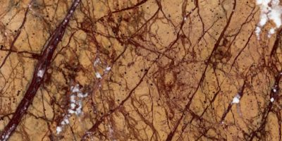 natural-stones-marble-marmore-rain-forest-gold-tumb