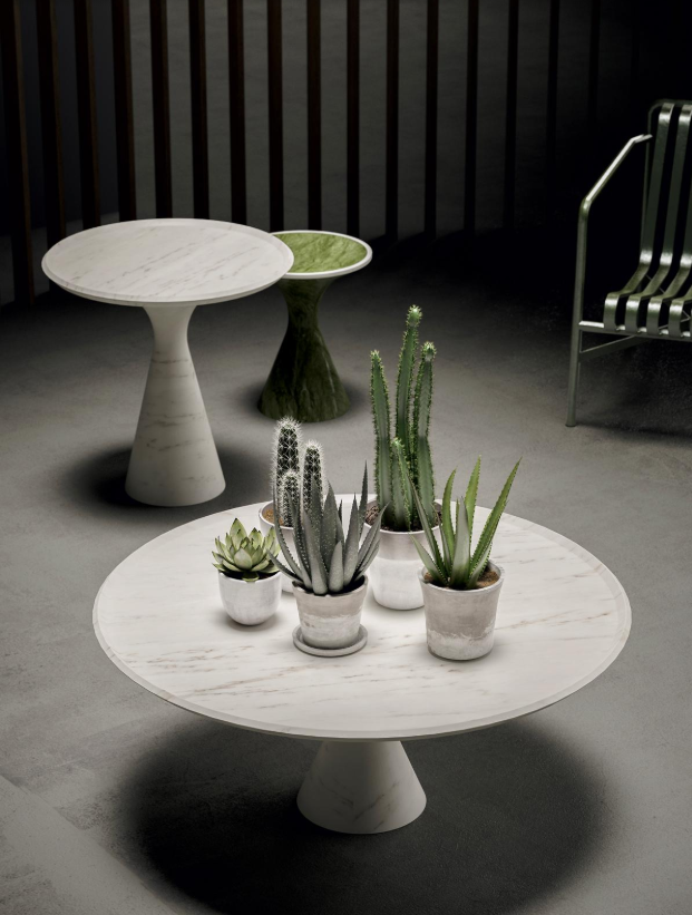 Pedina table with cacti and succulents on top